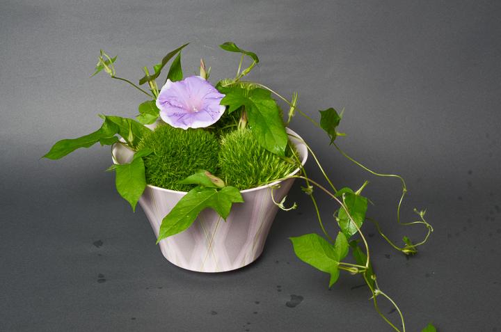 「彩色正燕子鉢」高さ13.8cm、径21.5cm